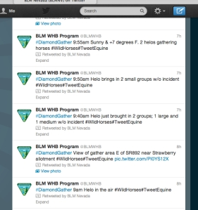 BLM twitter from 1/21/2013