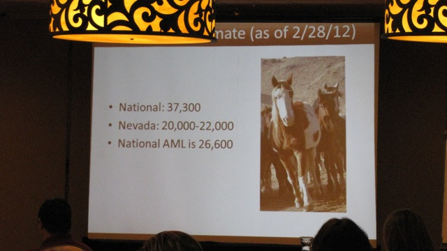 """BLM slideshow. Did you all know that """"AML"""" is not many more than Congress declared """"fast disappearing?"""" It is one of those questions BLM really can't answer """"why?"""""""