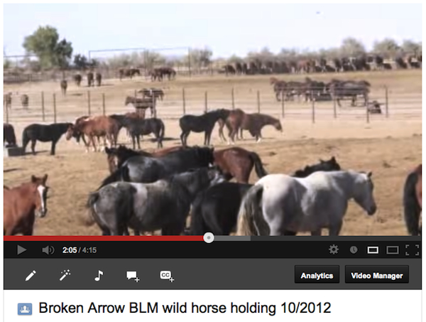 Video from the last tour of Broken Arrow